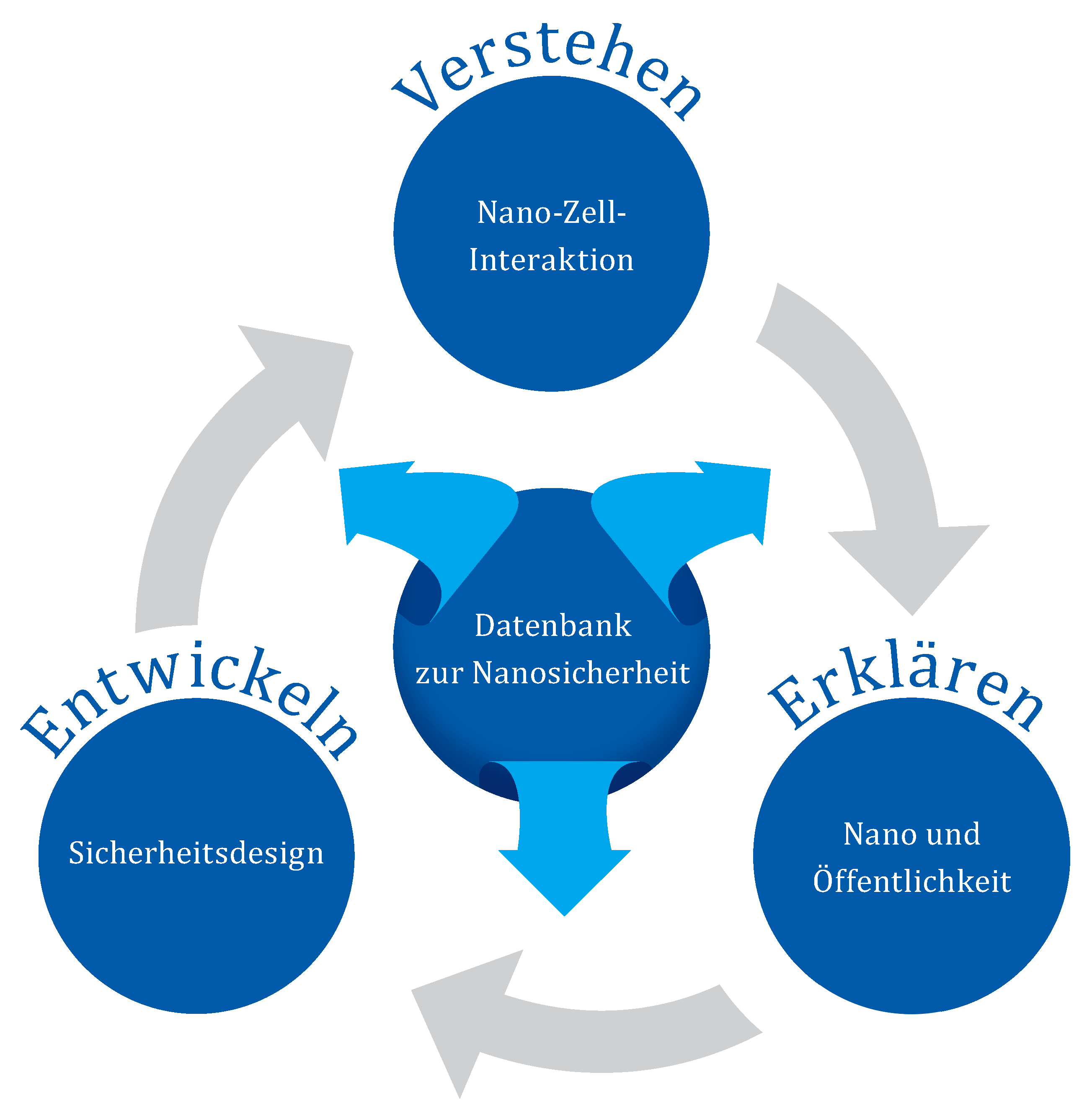 Forschungsschwerpunkte Leibniz Forschungsverbund Nanosicherheit